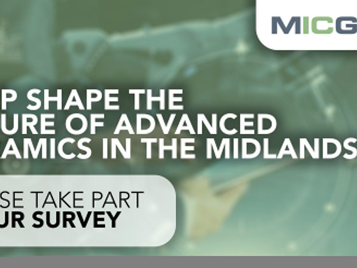 MICG Survey